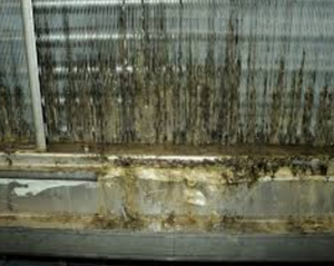 Dirty Coils with biofilm re-circulate bacteria and mold in buildings and increase energy costs